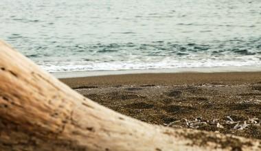 Livadi Beach Ferma